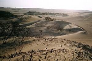 image-4-desertification
